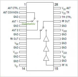 AM55-0003 pinout,Pin out