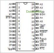 DS1497 pinout,Pin out