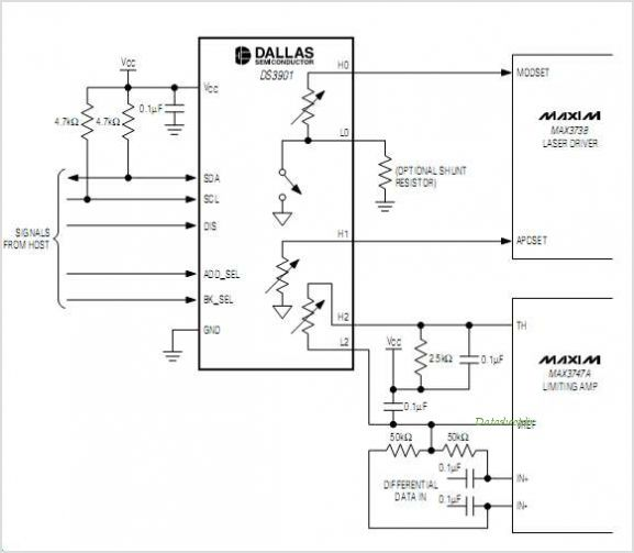 DS3901 circuits