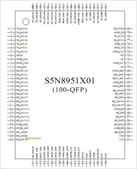 S5N8951X pinout,Pin out