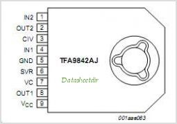 TFA9842AJ pinout,Pin out