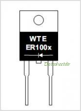 ER1000 pinout,Pin out