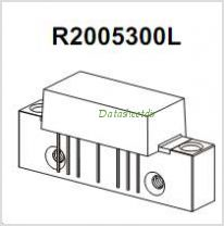 R2005300L pinout,Pin out
