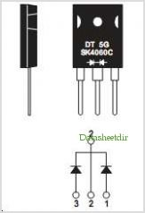 SK4040C pinout,Pin out