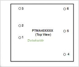 PTMA401120 pinout,Pin out