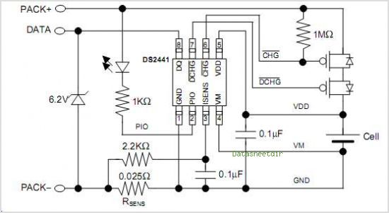 DS2441 circuits