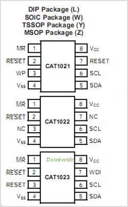 CAT1021 pinout,Pin out